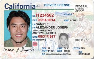 Driver license Américaine - usa.gov